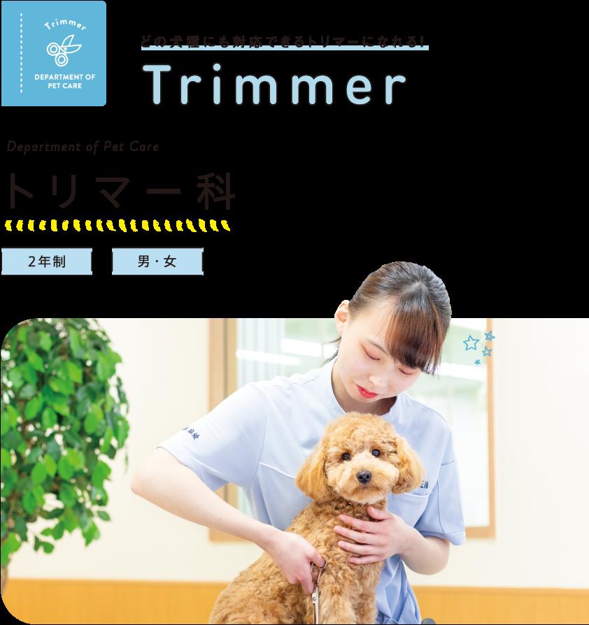 学校 トリマー 専門